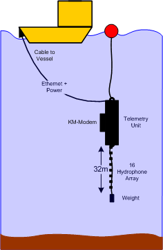 Subsurface Telemetry Unit